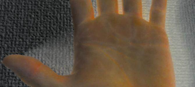 ワンポイント講座『手、指の構造』